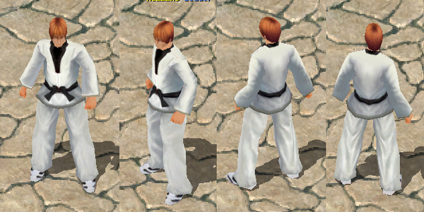 Product picture Taekwondo Uniform